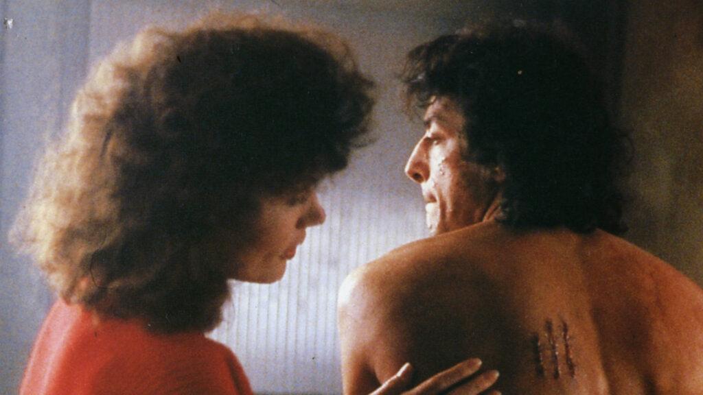a mosca de david cronenberg é inspiração para a capa de Fora do Comum - Vol. II - Filmes Ainda Mais Estranhos - ebook kindle de gabriel fabri - lançamento no halloween